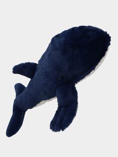 Blue Whale 40cm DPAPE0039 / 21R8GM32PE2099